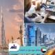 ✅ لیست مشاغل مورد نیاز امارات ✅ چگونگی اخذ ویزای کار امارات در این مقاله توسط کارشناسان مؤسسه حقوقی ملک پور(MIE اتریش) مورد بررسی و تحلیل قرار خواهد گرفت.