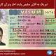 ویزای کار آقای علی سلیمی